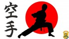 Перший день Чемпіонату Світу «2017 International Karate Friendship (IFT)»