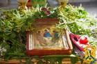 Народознавча година «Трійця – свято травами багате»