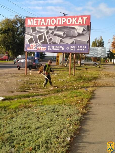 Масштабне прибирання вулиці Кам'яномостівської