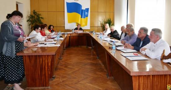 Чергове засідання виконавчого комітету
