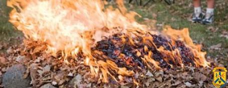 Куди звертатись, якщо ви страждаєте від спалювання залишків сухої рослинності та опалого листя
