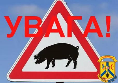 Африканська чума свиней (АЧС) у Вітовському районі Миколаївської області