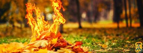 Наслідки спалювання листя…