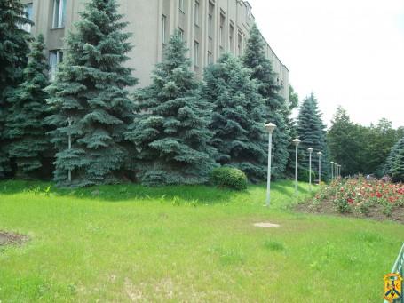 В Україні дозволили роботу непродовольчих ринків