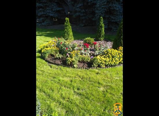 Варвари нищать квітник біля міськвиконкому
